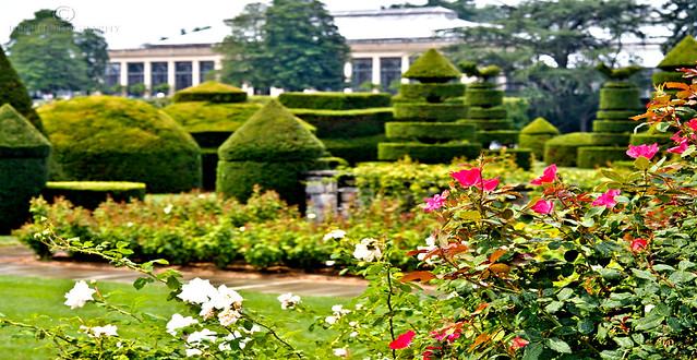 Conservatory - Longwood Gardens