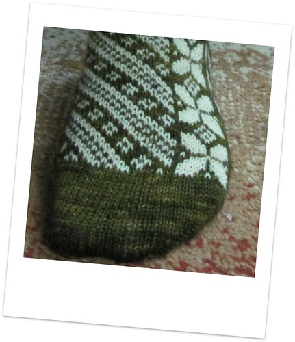 butterfuly sock 1