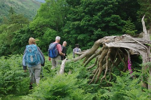 200110619-37_Descent into Eglwyseg River Valley - North of Llangollen by gary.hadden