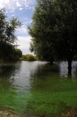 Kansas City District Lakes - Sept. 7, 2011