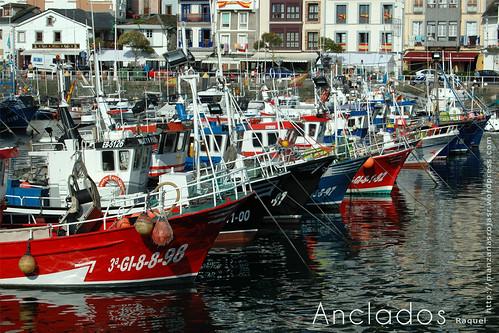 Pesqueros anclados en el puerto de Luarca