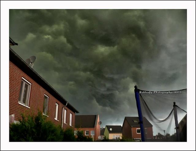 #230/365 Apocalypse