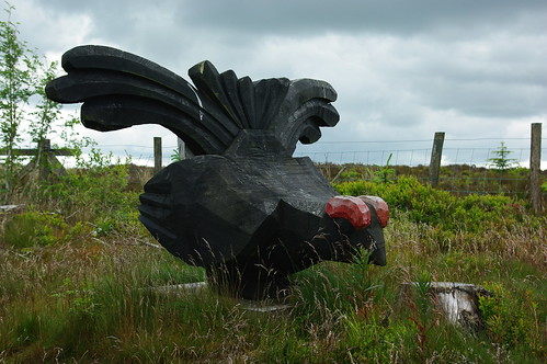200110619-06_Wooden Grouse Carving - Pendinas Forest - Esclusham Mountain by gary.hadden