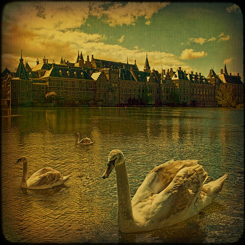 "Den Haag... Old castle over the ""swan lake"". by egold."