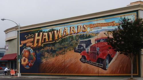 Hayward 01