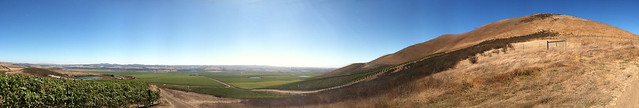 Vineyard 2011 Panorama with lakes and mnt.jpg
