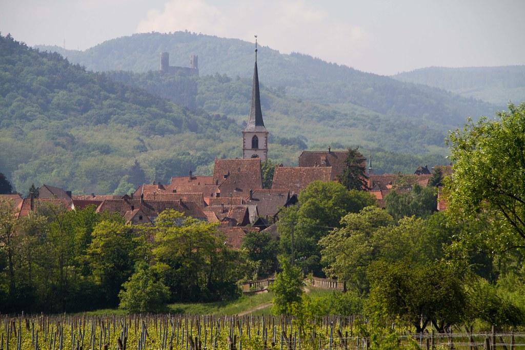 Mittelbergheim 20110430-IMG_0170