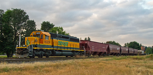 Day 220 :: 365 … BNSF by Echo9er