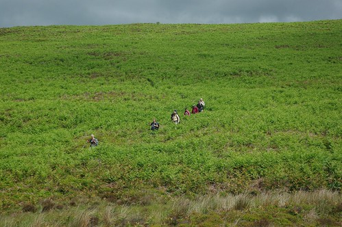200110619-24_Pushing through the Bracken - Maesyrychen Mountain by gary.hadden