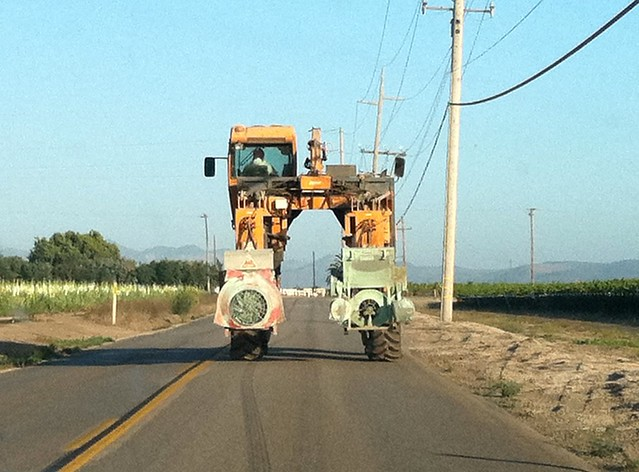 Vineyard 2011 Harvester