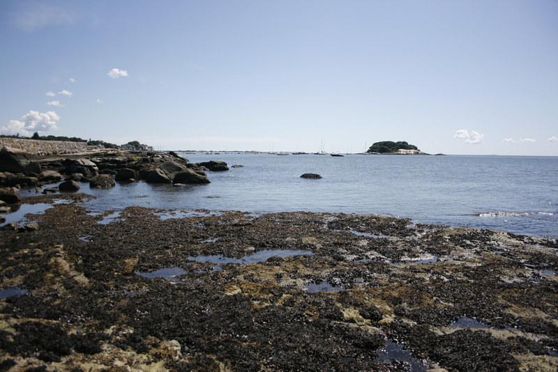 beach, tuxis island