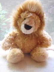 Mister Lionpants.