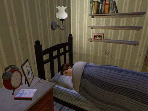 Sleeping in Second Life.