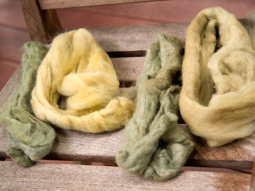 Black Bean Dye: Roving