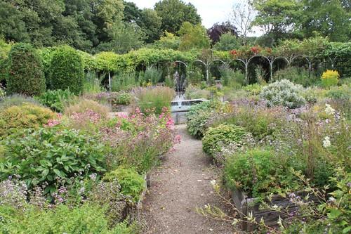 20110805_IMG_1549_herb-garden