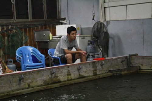 [台湾2.5] エビ釣りするTAKA