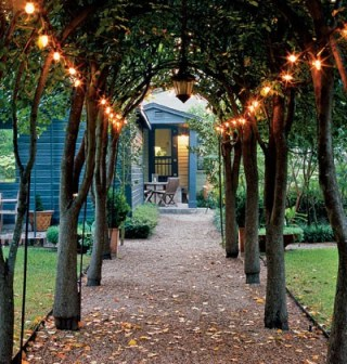 outdoor arbor path