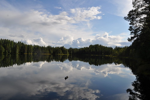 Pintamo Finland