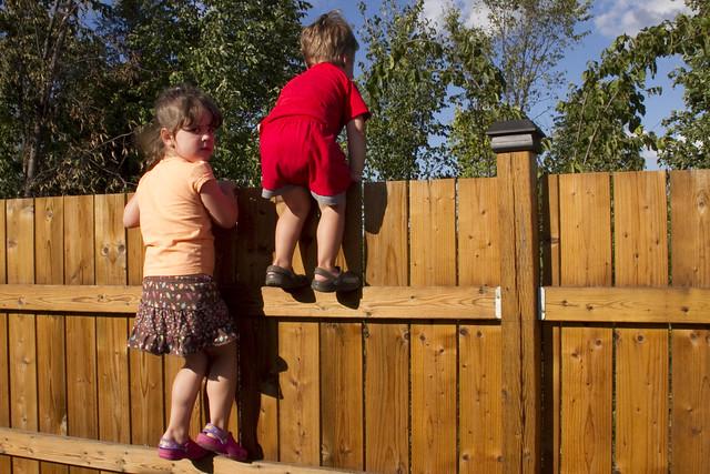 Fence Climbing 3