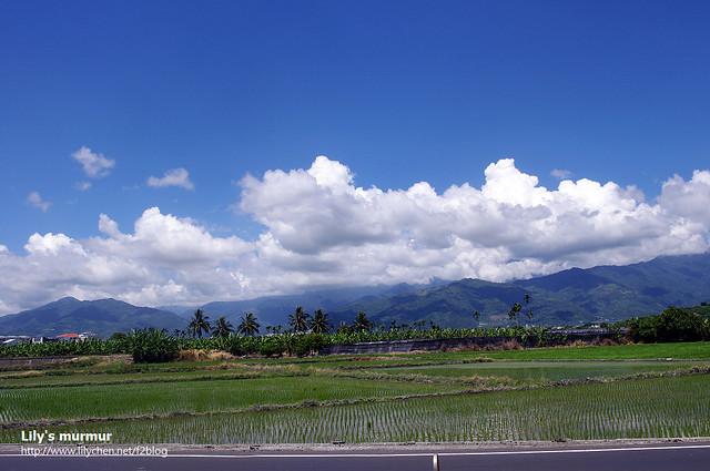 那天的天空就這麼藍,藍天白雲綠地,美翻了。