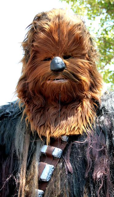 STAR WARS | CHEWBACCA