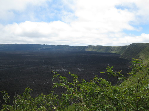 View into the crater of Sierra Negra Volcano on Isabella Island, Galapagos