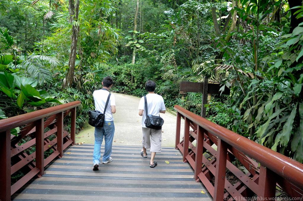 Jurong Birdpark (66 of 89)