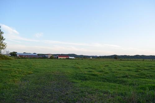遠別あたりの牧場