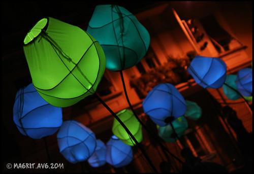 instalation Sophie Guinot at Beograd Svetla