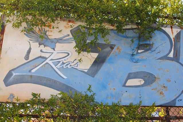 Ria's Bluebird