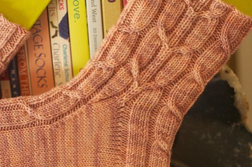 Calcareous sock: cable detail
