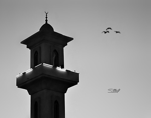 - by saeed al alawi