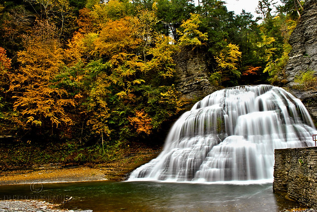 Lower Treman in the Fall