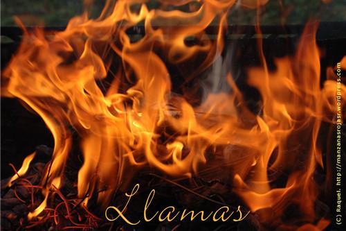 Fuego. Llamas