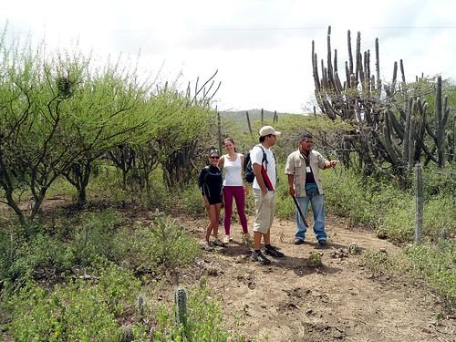 Nuestro guía orientandonos sobre la flora del sitio