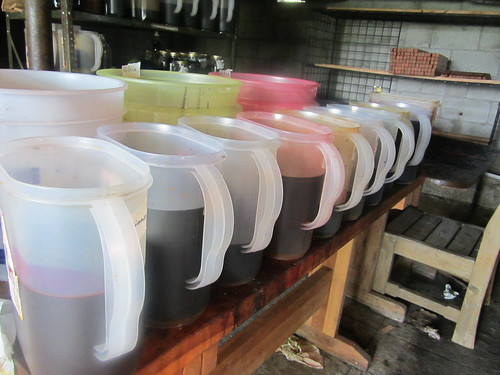 dyeing March 2012-02.JPG