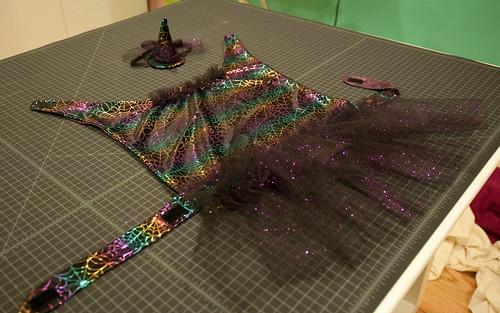 Costume full view