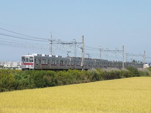 DSCF5517