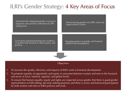 ILRI Gender Strategy: 4 Key Areas of Focus
