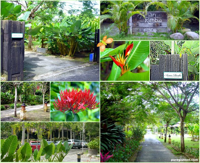 Green Haven collage