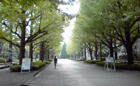 Aoyama Gakuin University