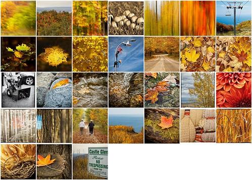 October's Palette