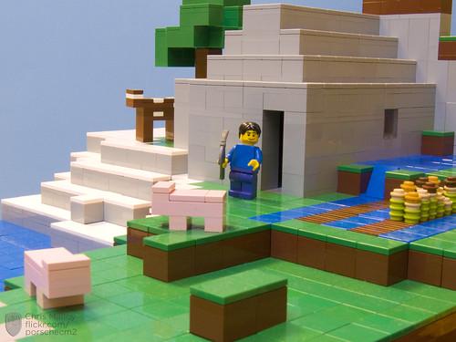 Minecraft8
