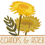 Echinops and Aster