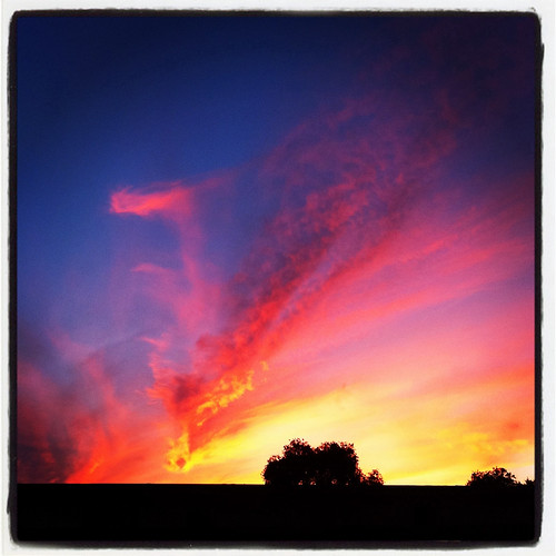 Happy Thing: Sunset