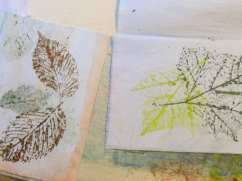 elm and sycamore leaves