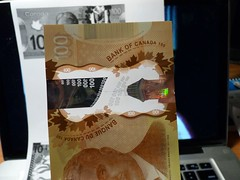 2011 Canada New Polymer $100 - back - pix 20