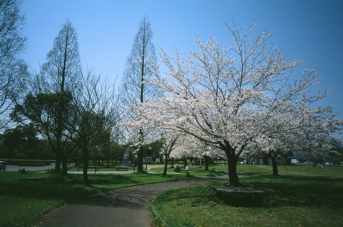 nearest park in my home