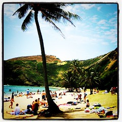 Paradise is in Hawaii 