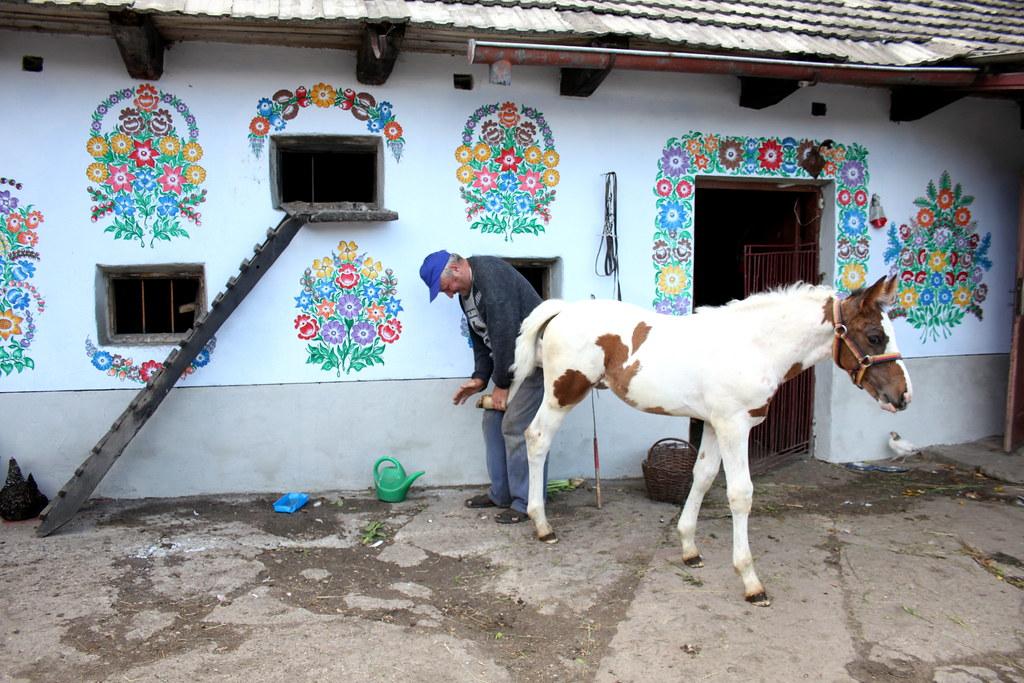 Farmer, Foal and Flowers, Zalipie, Poland